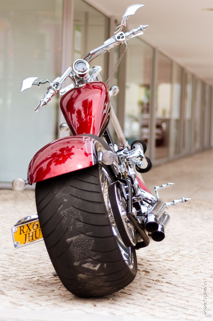 :: Harley Davidson ::