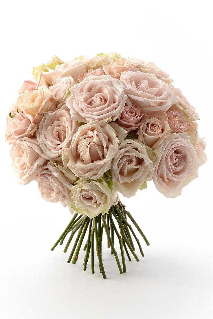 #wedding #bouquet #flower #rose #pink #vintage #classic #Malta #NOVARESE #ウエディング #ブーケ #フラワー #ローズ #薔薇 #バラ #ピンク #ヴィンテージ #クラシック #ノバレーゼ