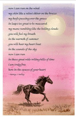 Inspirational Horse Poems | sympathy poem image search results