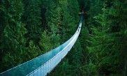 #travel #famousbridge #bridge