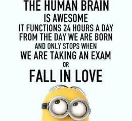 Funny Minion Love Quote Pictures, Photos, and Images for ...