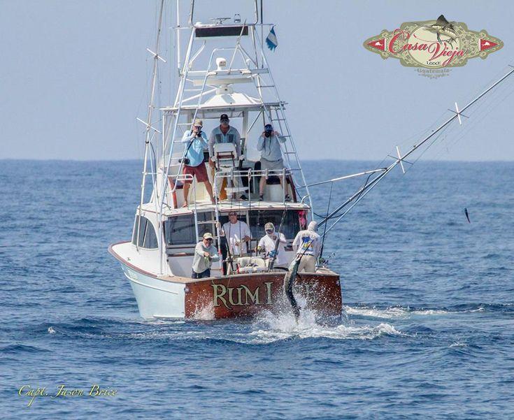 The 25 best deep sea fishing boats ideas on pinterest for Deep sea fishing boat