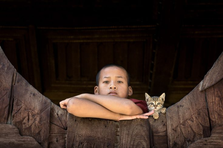 A young buddhist monk and a monastery kitten look out from the unique oval windows at Shwe Yan Pyay Monastery at Nyaung Shwe, Myanmar
