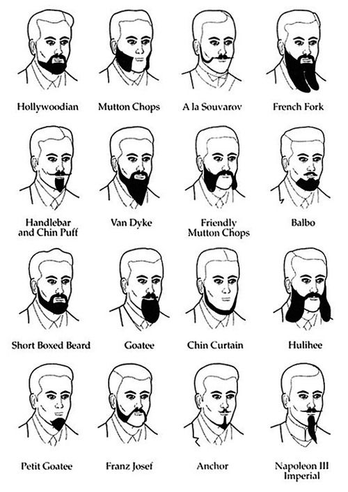 facial hair style names best 25 types of mustaches ideas on 8416 | 7bbba5e67b847fe392f07984daab8e2c full beard beard love