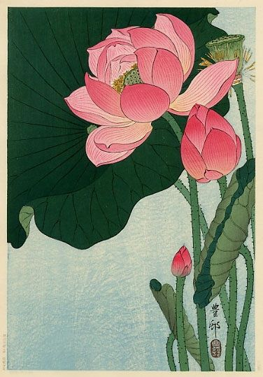"Flowering Lotus. Ohara Koson (1877-1945) was a Japanese painter and printmaker of the late 19th and early 20th centuries, part of the shin-hanga (""new prints"") movement. Most of his production was prints of animals (kachō-ga) and flowers."