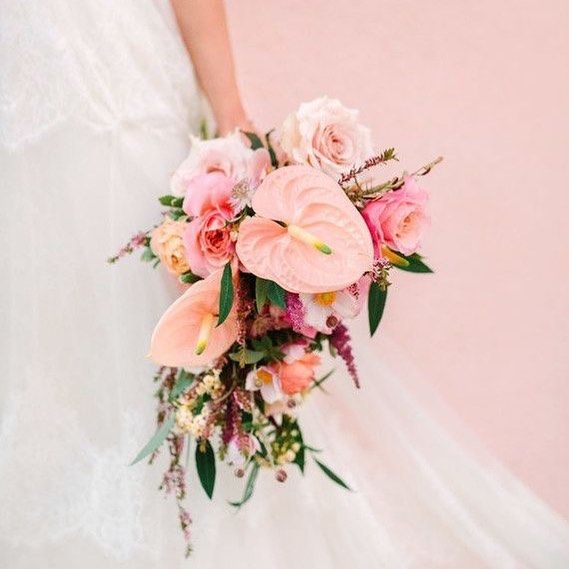 Birdy Grey Fresh Pink Wedding Flowers Flower Crown Wedding