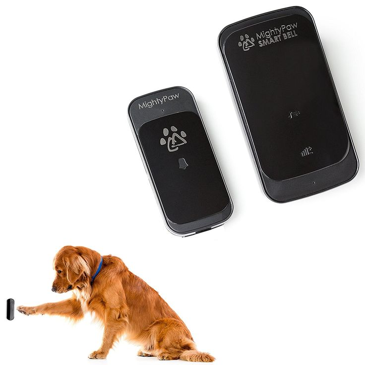 Mighty Paw Smart Bell, Wireless Dog Doorbell, Potty Bell for Dogs, Waterproof with Touch Pad Sensor. Includes Free Training Guide (Black, 1 Transmitter)...   : Cats furniture