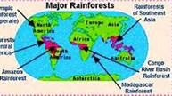 rainforest maps of the world - Bing Images
