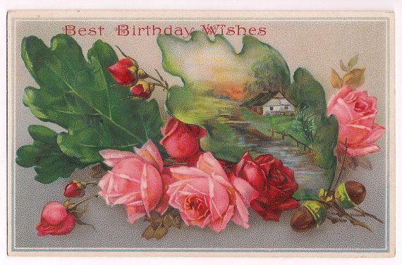 Antique Roses, Birthday 1913