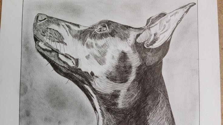 Ványi Tóth Viola rajza