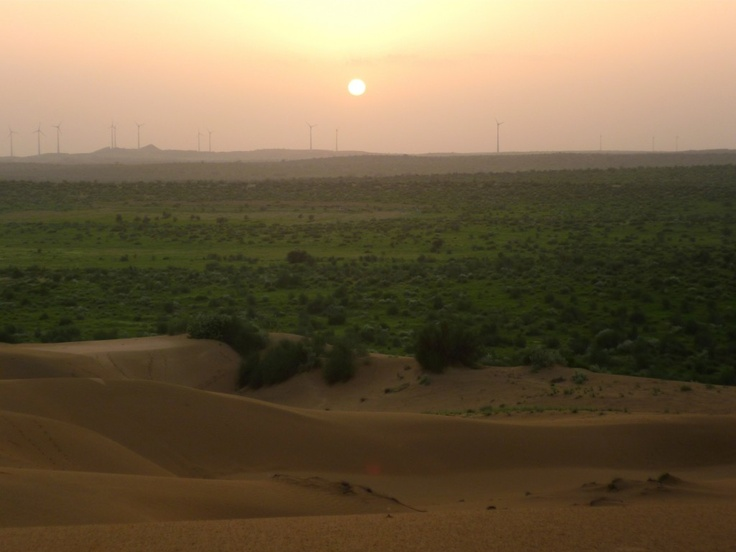 Sand Dunes outside of Jaisalmer, Rajasthan