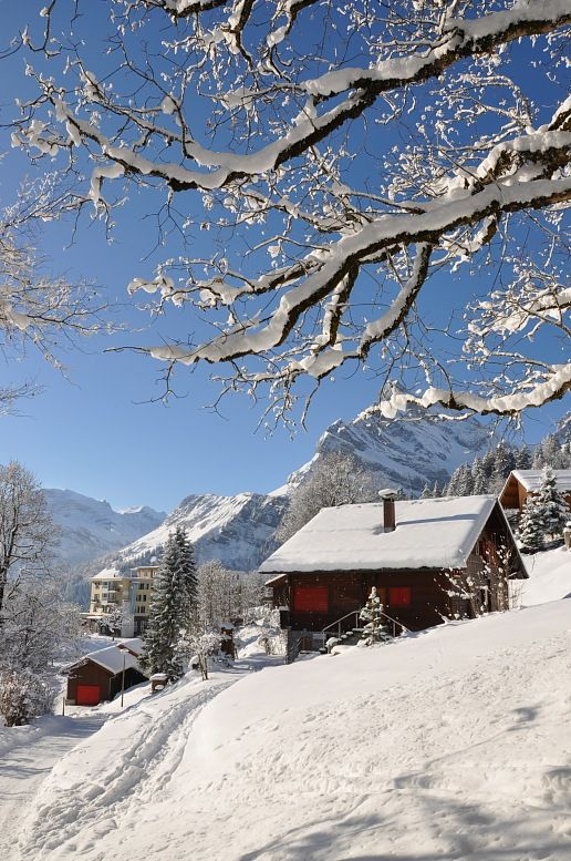 Ski vacations - famous Swiss skiing resort Braunwald. Switzerland vacation.