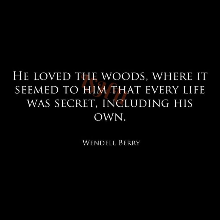 best wendell berry ideas wendell erdman berry is an american novelist poet environmental activist cultural critic and farmer a prolific author he has written many novels