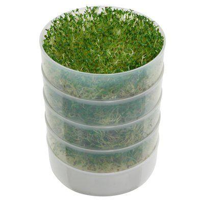 Germoir à micropousses à eau + vidéo   -Victorio Kitchen Germoir rond pour graines