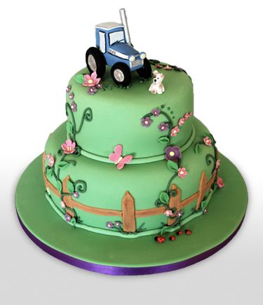 39 best farm birthday cakes images on Pinterest Conch fritters