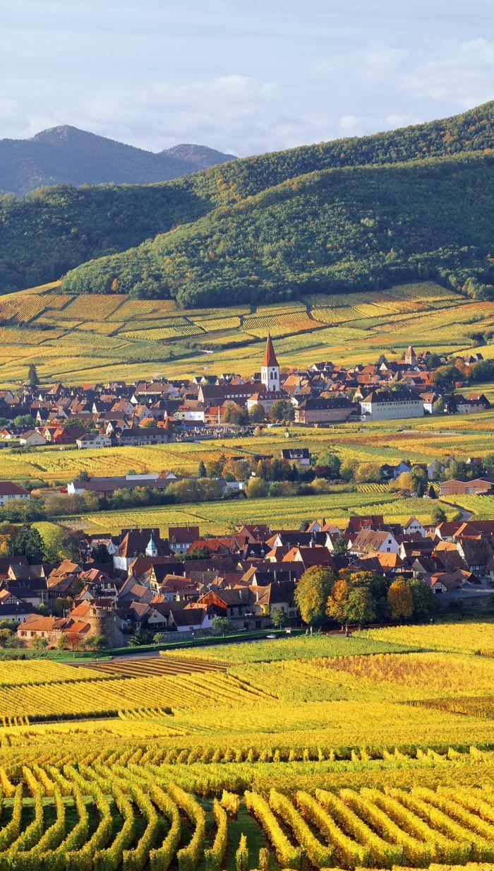 Villages d'Ammerschwihr et Kientzheim en Alsace, FRANCE