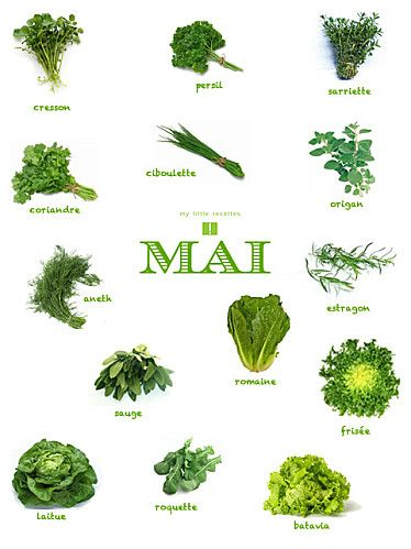 Aromates et salades