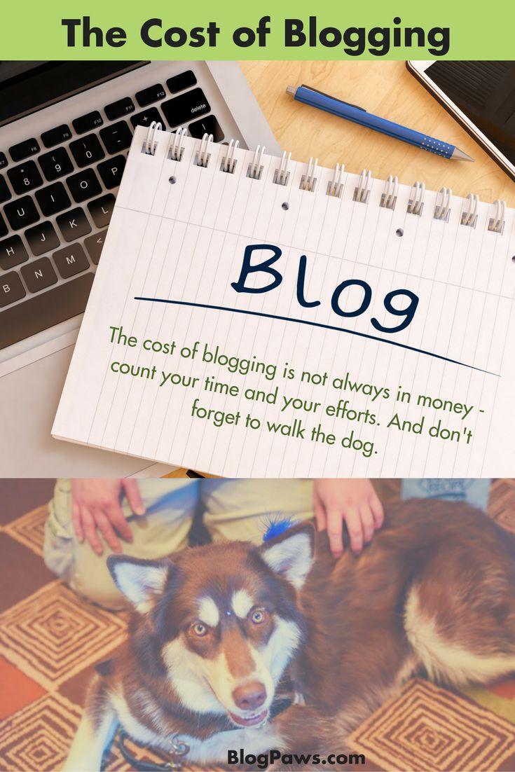 The Cost of Blogging 7 Must Haves