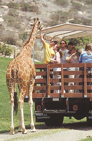 San Diego Wild Animal Park (and Botanical Park), California
