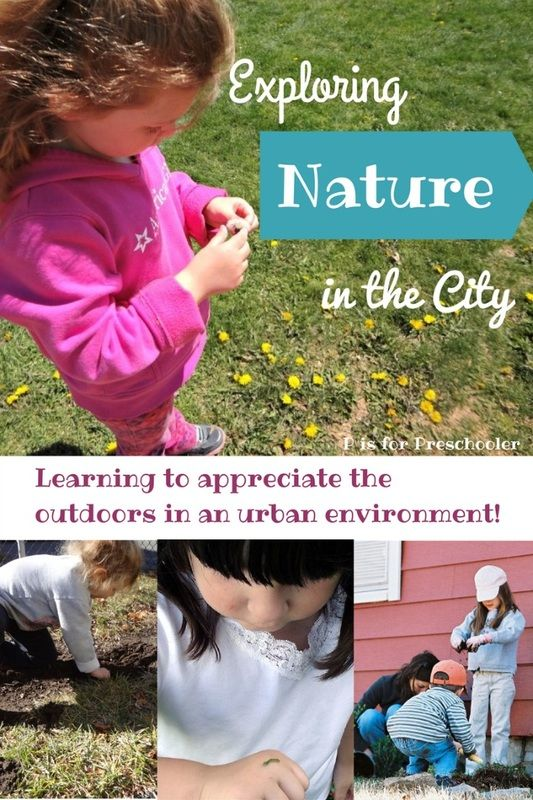 The Best Nature Study Supplies for Kids | Rhythms of Play
