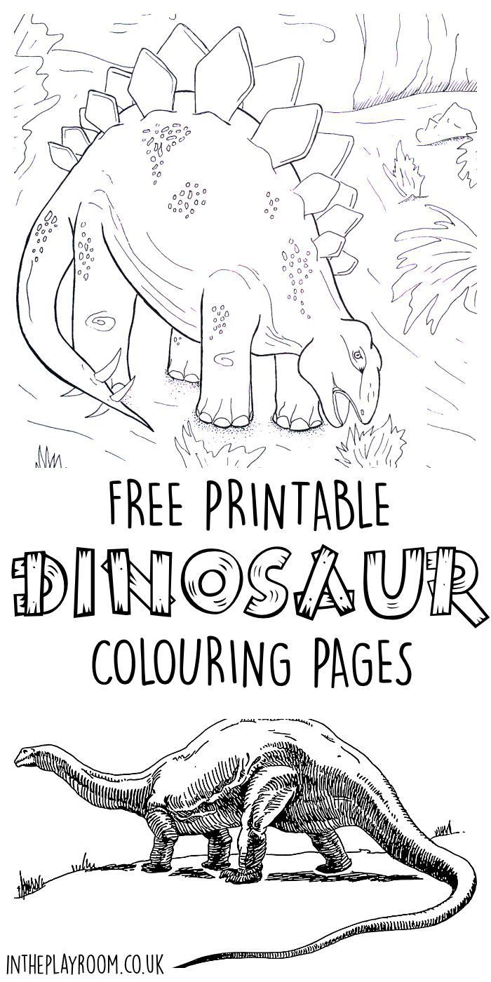 Dinosaur coloring book pages - Dinosaur Colouring Pages