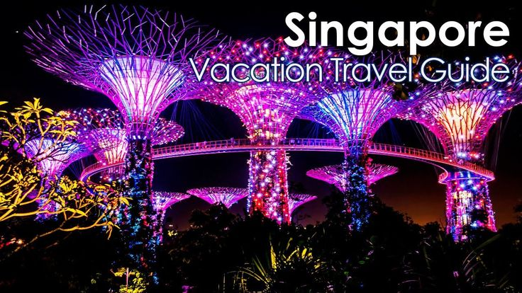 10 Best Places to Visit in Singapore | Travel Guide | Top10 Visit - WATCH VIDEO HERE -> http://singaporeonlinetop.info/travel/10-best-places-to-visit-in-singapore-travel-guide-top10-visit/    This list include the following destinations: Marina Bay Sands Universal Studios Singapore Sentosa Gardens by the Bay The Night Safari The Singapore Flyer The Singapore Zoo Singapore Botanical Gardens Little India, Arab street, Chinatown Jurong Bird Park Video credit to the YouTube chan