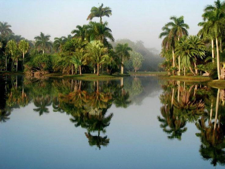Fairchild Tropical Botanic Garden, Coral Gables