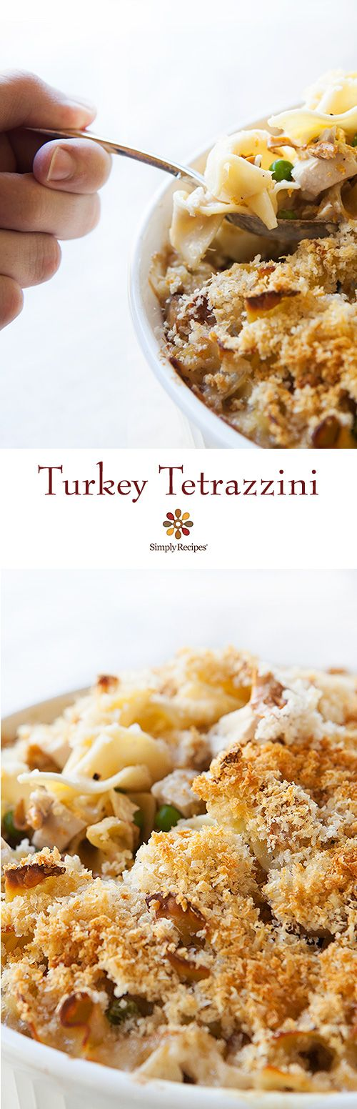 Great way to use turkey leftovers! Turkey tetrazzini casserole with egg noodles, mushrooms, peas, Parmesan and Swiss cheeses, cream, bread crumbs and cooked turkey. On SimplyRecipes.com