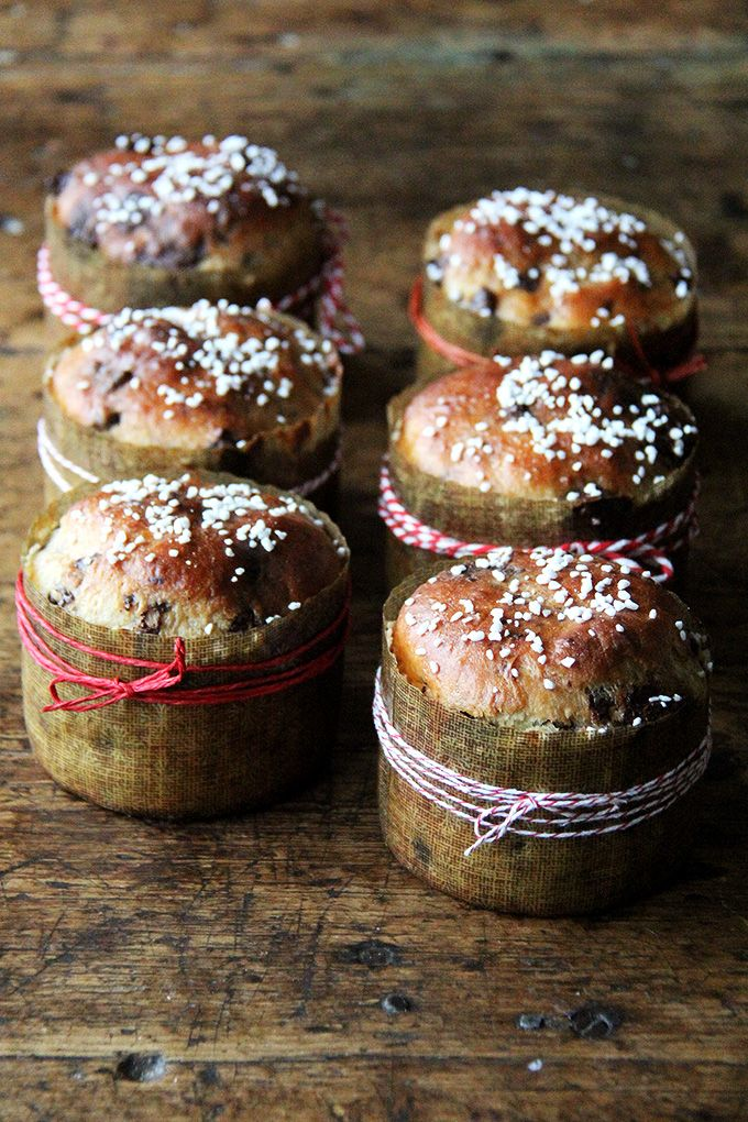 Chocolate-studded, pearl-sugar topped, mini panettone, from Bread Toast Crumbs #breadtoastcrumbs