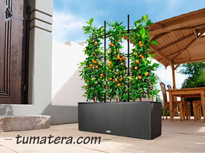 Jardinera de formas rectas con un diseño simple y contemporáneo.  Encuentralas en: http://www.tumatera.co/products/matera-inteligente-09-mi-1003234cottage/