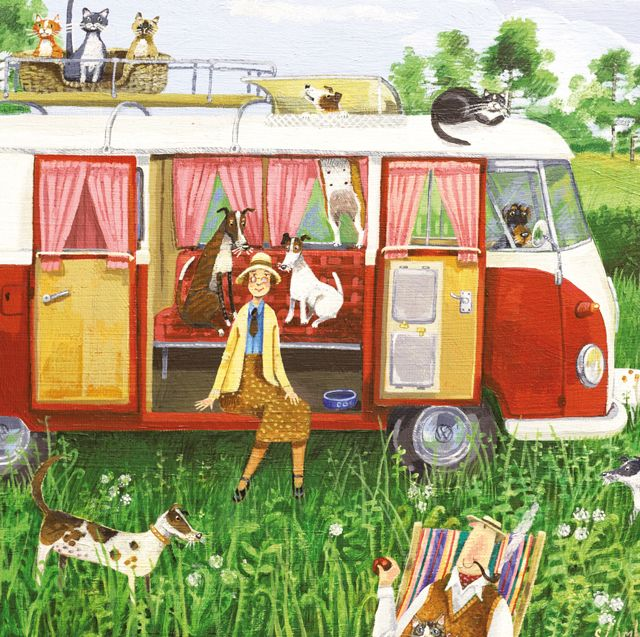 'Camping Capers', by Stephanie Lambourne. Published by Green Pebble (UK). Distributed by Art Publishing (Australia). www.greenpebble.co.uk www.artpublishing.com.au