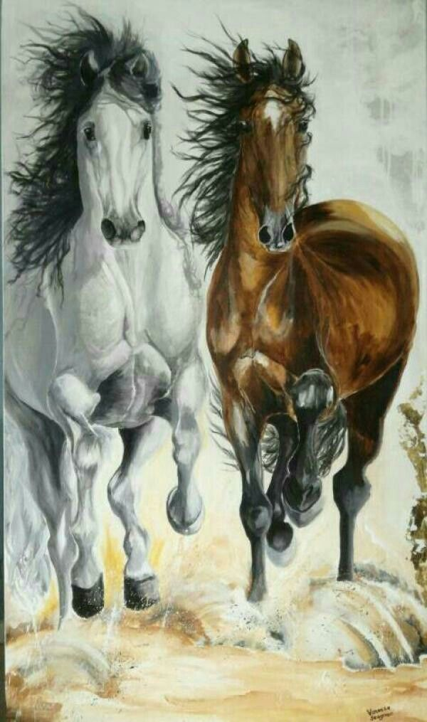 Equine Art in Acrylics and mixed media. Vanessa Seagreen Art