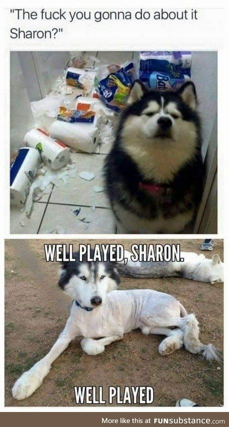Sharon....No sharon