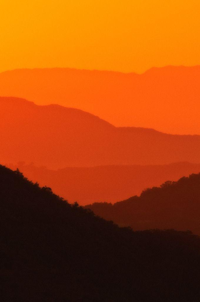 Nice Several shades of Orange 18