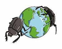 Image result for logo art of dung beetles