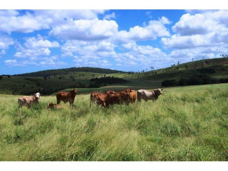 400 Acres Irrigation & Grazing - Quality Property