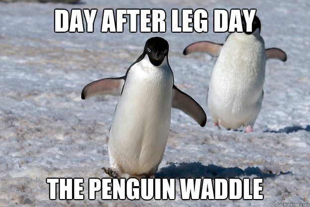 Best glute and leg day exercise to grow your butt muscles ladies
