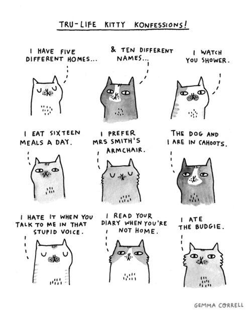 kitty konfessions © Gemma Correll
