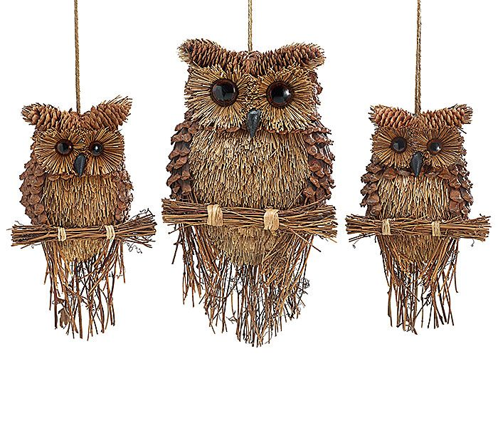 Best 25 pinecone owls ideas on pinterest owl ornament for How to make pine cone christmas tree ornaments