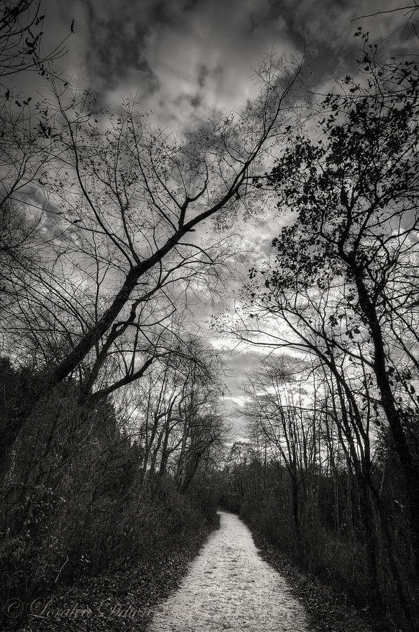 Walking the Road Alone... by Loralea Kirby on 500px