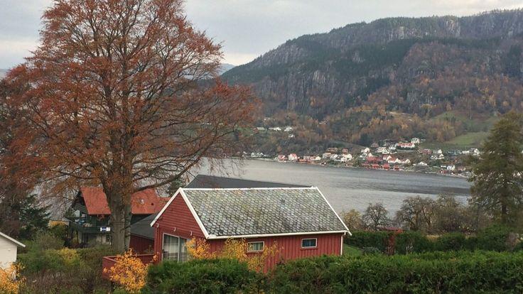 Hjelmeland - HJELMELAND: Her i Hjelmeland i Ryfylke blei det sett temperaturrekord i dag tidleg. Klokka seks om morgonen blei det målt 18,7 grader, Bilete blei teke litt seinare då gradestokken hadde gått ned til 17,7. - Foto: Trine L. Danielsen /