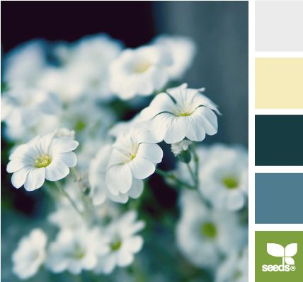 spring tones - colour palette