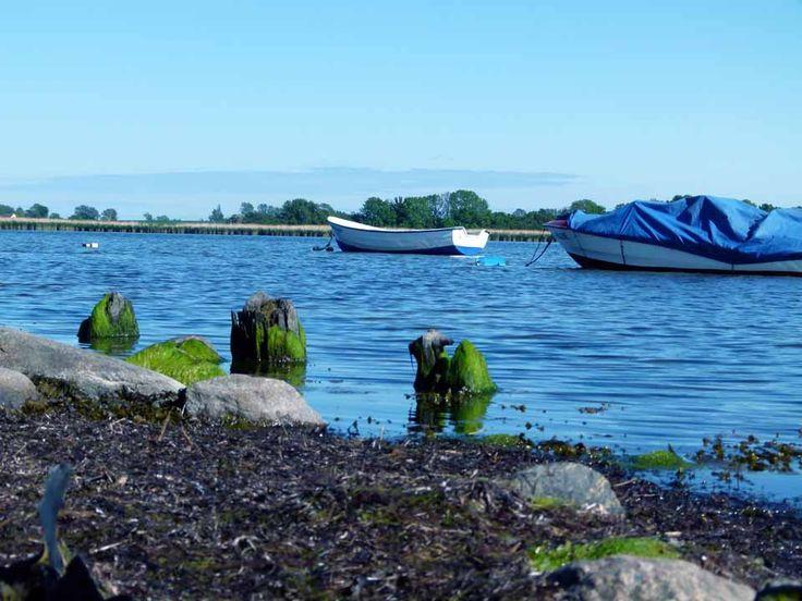Impressionen von der Malreise nach Rügen | Boote im Bodden vor Middelhagen (c) FRank Koebsch (2)