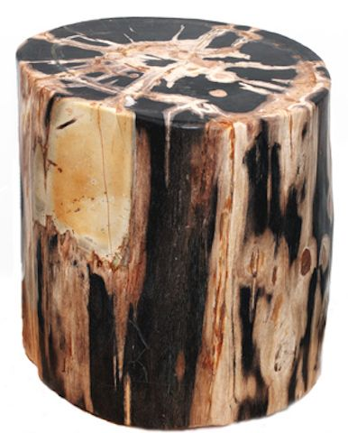 Natural grain markings featured in these primarily black polished fossilized logs. Each with its own strains and colorings creating its own unique natural look.