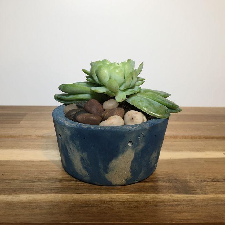 Blue concrete planter
