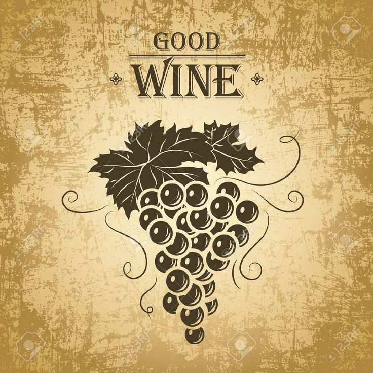 23973792-Wine-label-with-grapes-Wine-menu--Stock-Vector.jpg (1300×1300)