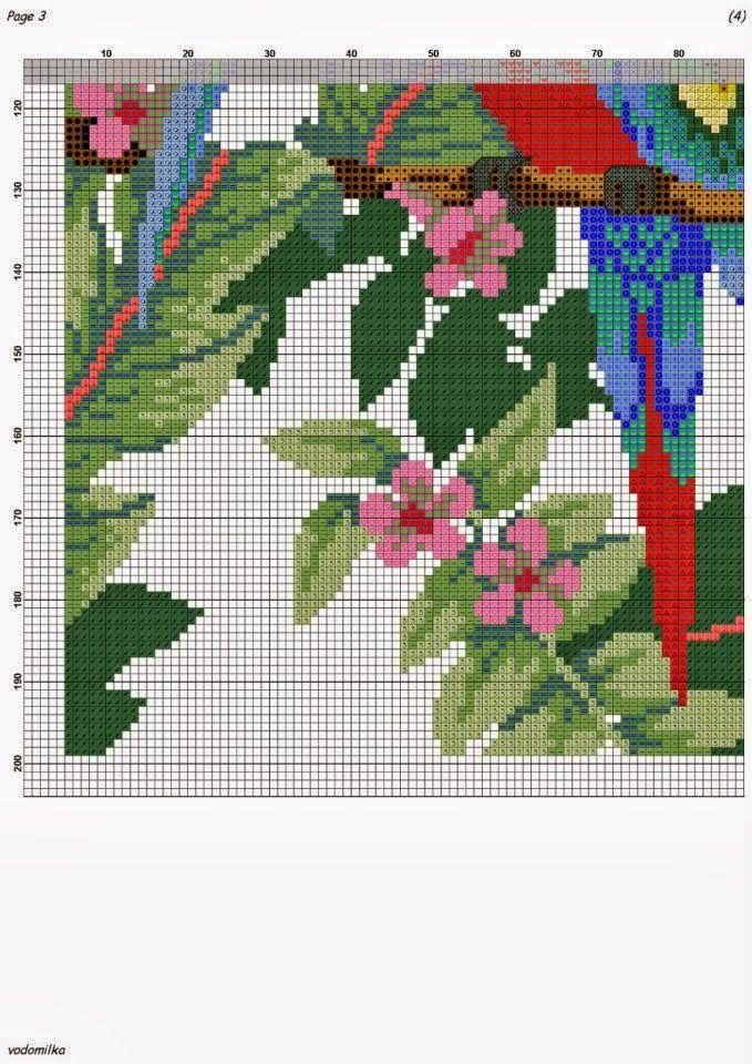Blue and Red Cockatiel picture 3, Page 3 of 6.  ENCANTOS EM PONTO CRUZ: Pássaro e Borboleta