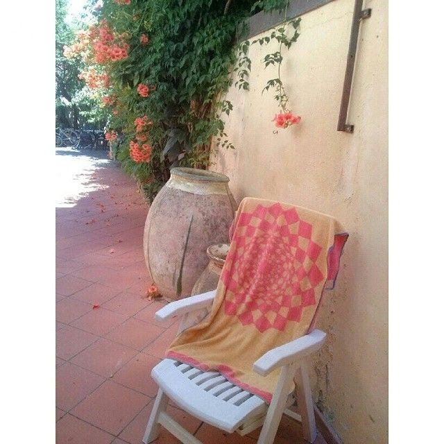Si fa la siesta anche qui. .. www.hotelmorchio.com
