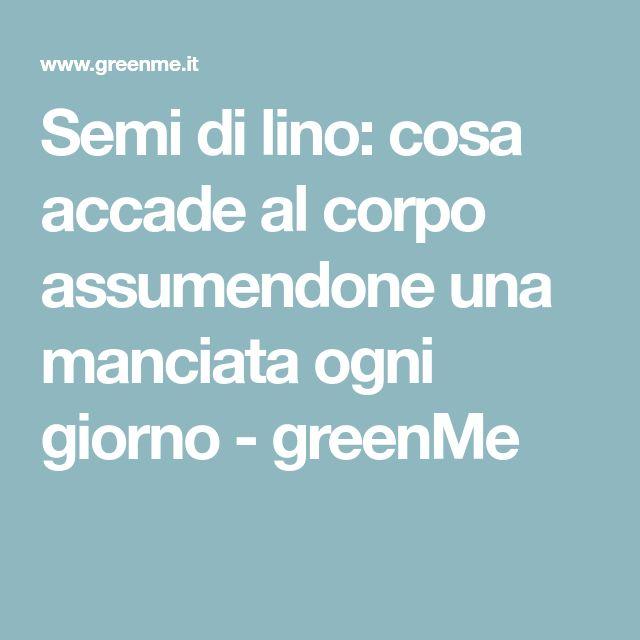 Semi di lino: cosa accade al corpo assumendone una manciata ogni giorno - greenMe