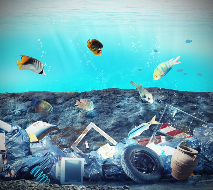 how to help save the ocean pollution